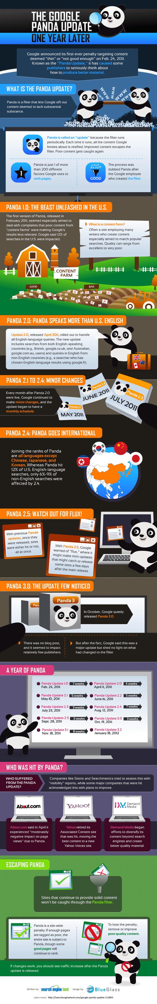 SEO Google Panda Infographic