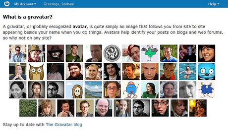 wordpress gravatar