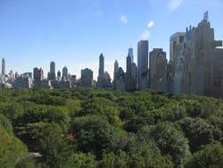 New York Central Park Skyline