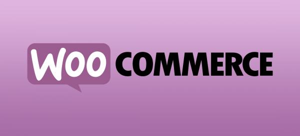 woocommerce ecommerce websites