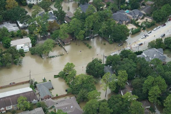 hurricane harvey disaster recovery
