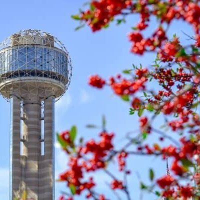 Dallas Web Design Company - photo of tower